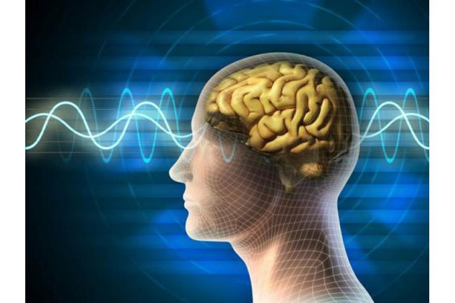 16 Dưỡng Chất Cho Não Bộ Khỏe Mạnh Và Tinh Thần Thoải Mái