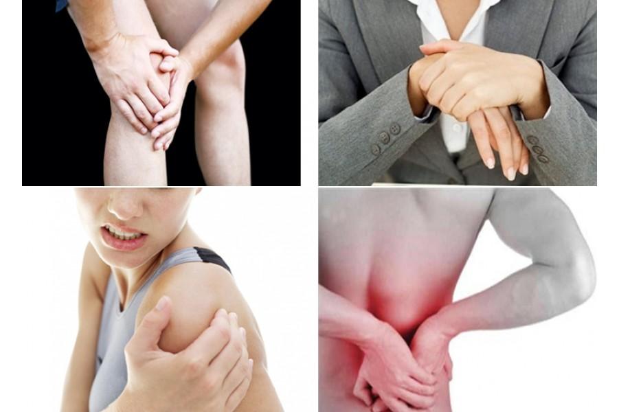 6 cây thuốc nam chữa bệnh đau nhức xương khớp hiệu quả